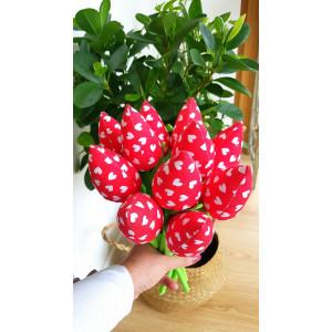 Tulipany czerwone w serca